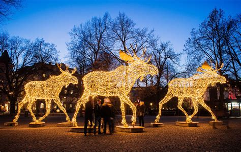 moose 60 inch lighted outdoor display lighted moose yard decoration www indiepedia org