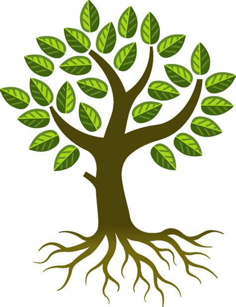 tree graphic 28 images free vector graphic tree forest