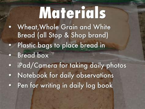 bread mold  luke berge