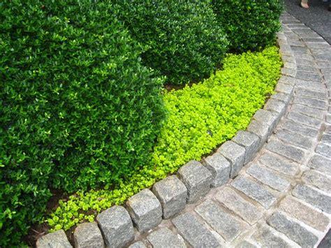 edging flower beds flower bed stone edging garden borders pinterest