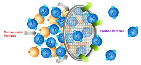 Mercury Detox Pores by Breakthough In Detoxification Results Rna