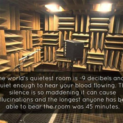 the quietest room meme center alix profile