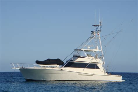 san diego fishing boat hit by yacht 57 viking yachts 1989 reel energy for sale in san diego