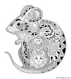 intricate pumpkin coloring pages 1000 images about intricate coloring pages for adults on
