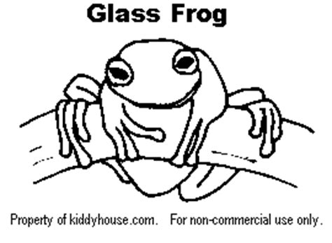 Glass Frog Coloring Page | frog cliparts coloring kiddyhouse com themes frogs
