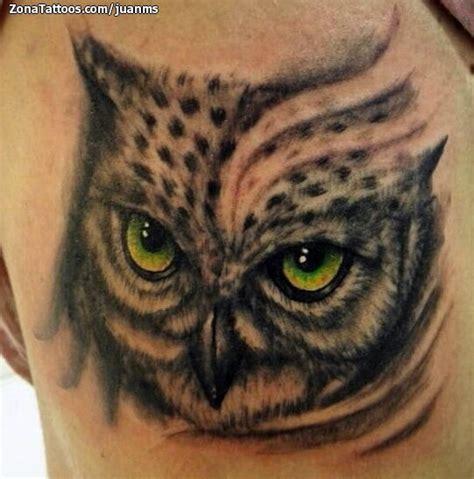 imagenes de tatuajes de buhos para hombres tatuaje de b 250 hos aves animales