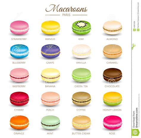 colorful macaroons flavors stock vector illustration of