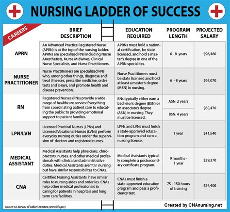 You Can Get With A Nursing Degree And Mba by Nursing Ladder Of Success Infographic Infographix