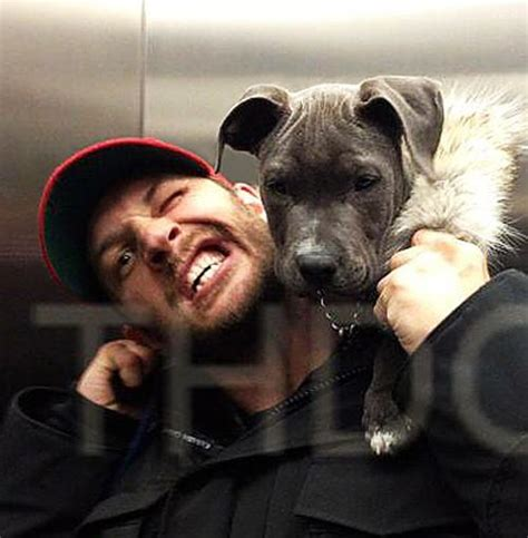 tom s dogs 17 best images about tom on the park toms and