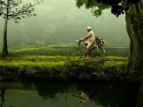 Berapakah Green Coffee free photo bike nature green free image on