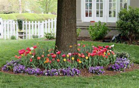Bulb Garden Ideas 5 Prime Spots To Beautify Your Yard With Flower Bulbs Preen