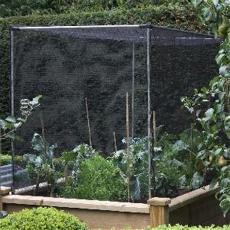 build   fruit  vegetable cages fruit