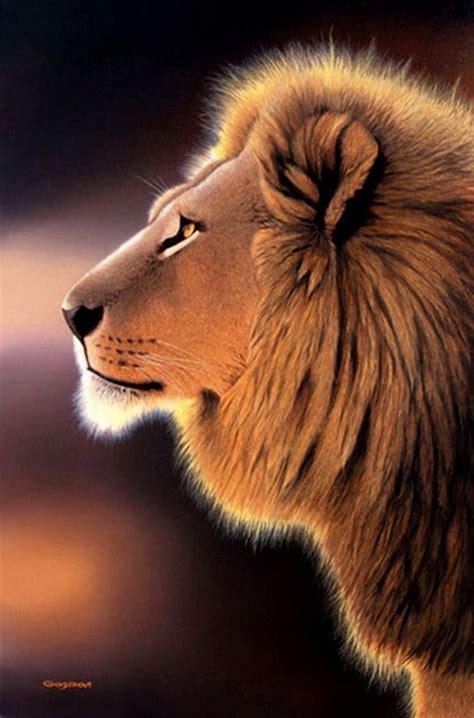 imagenes abstractas de leones cuadros modernos pinturas y dibujos animales salvajes