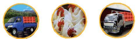 Keranjang Ayam Hidup keranjang unggas keranjang ayam rumah potong ayam