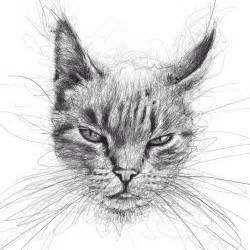 vince low动物铅笔画欣赏 设计之家