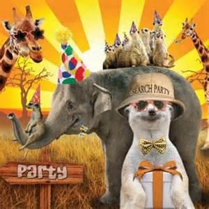 animal birthday card 163 2 60 a great range of animal birthday card from fresh