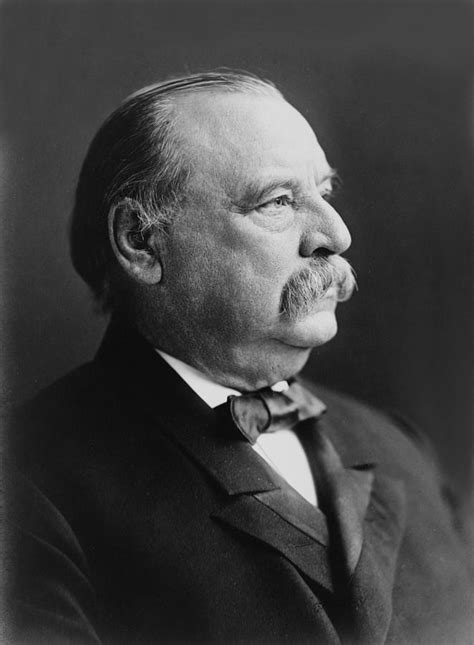 grover cleveland bathtub grover cleveland president of the united states