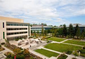 Redmond Campus A Tour Of Microsoft S Redmond Campus Rediff Com Business