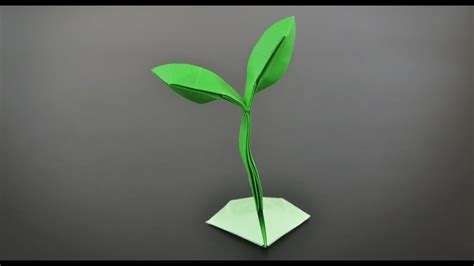 origami sprout  plant instructions  english br youtube