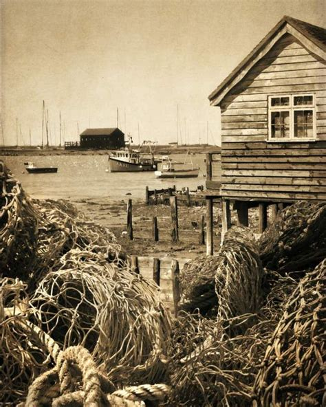 The Shed Mersea Island by 117 Best Images About Mersea Island On Pill