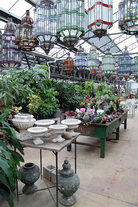 city escape garden center chicago il indoor plants