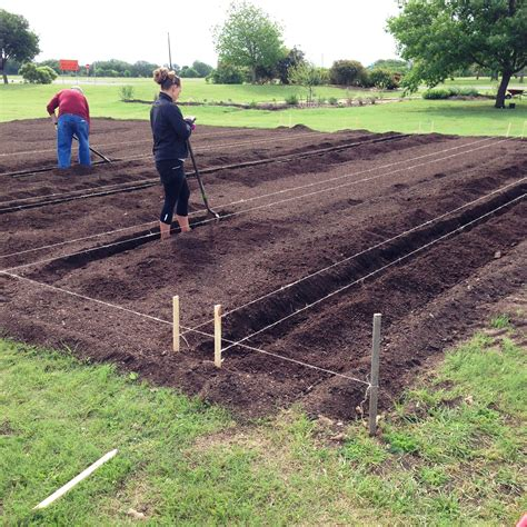 Laying Out A Vegetable Garden Week Ending 04 19 2015 Williamson County Master Gardeners