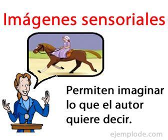 imagenes sensoriales significado y ejemplos ejemplo de im 225 genes sensoriales