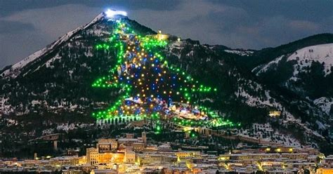 places to get christmas trees near me the 11 most spectacular trees from around the world