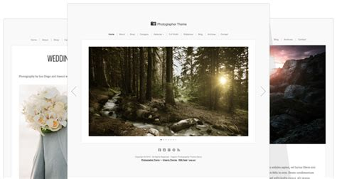 photographer theme update beautiful responsive