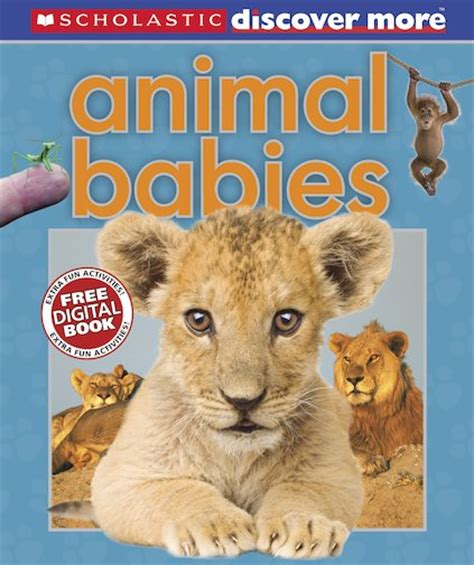 animal books discover more animal babies scholastic club
