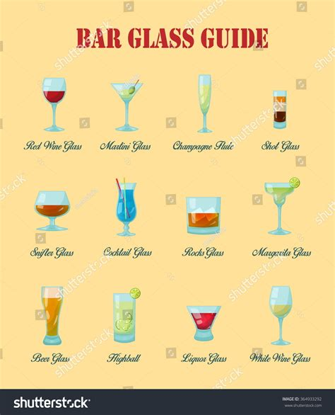 barware glasses guide bar glass guide collection various kinds stock vector