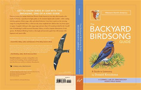 the backyard birdsong guide workman publishing the