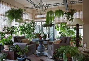 plantes vertes dans le jardin d hiver 224 la id 233 e