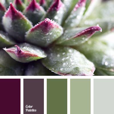 thistle color color of thistle flowers color palette ideas