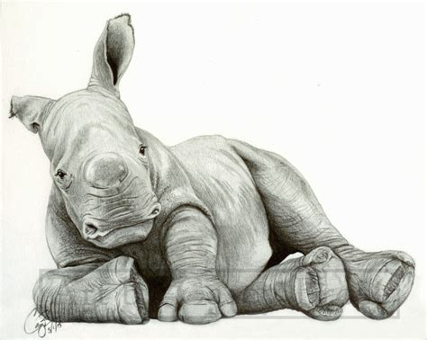 Baby White Rhino by BlueCea on DeviantArt