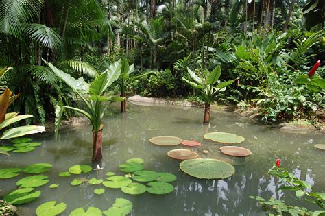the top ten best botanical gardens in the world