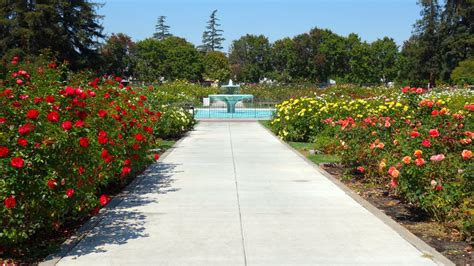 San Jose Garden by Best Silicon Valley Excursions Sunset