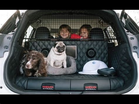 Nissan X Trail For Dogs by Nissan X Trail 4dogs Concept The Ultimate Suv For