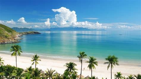 Maharaja Express Train by Kerala Tour With Goa Beach Tree Trunk Travel