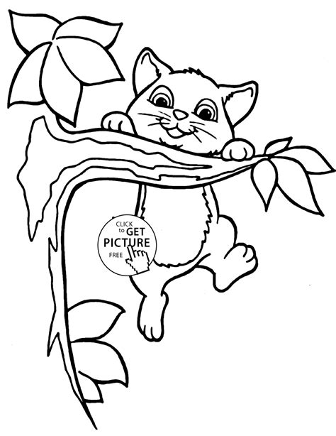 coloring books for toddlers 50 animals to color for early childhood learning preschool prep and success at school activity books for ages 1 3 books small cat animal coloring page for animal