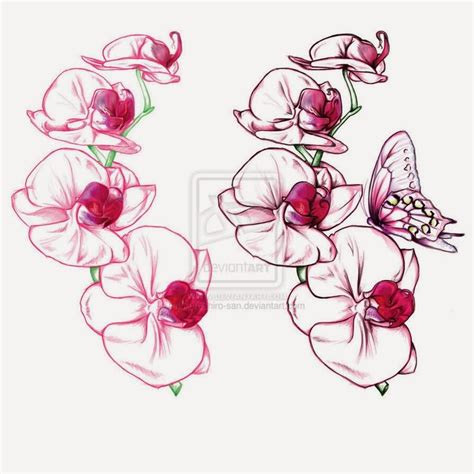 cattleya tattoo designs eletragesi cattleya orchid images