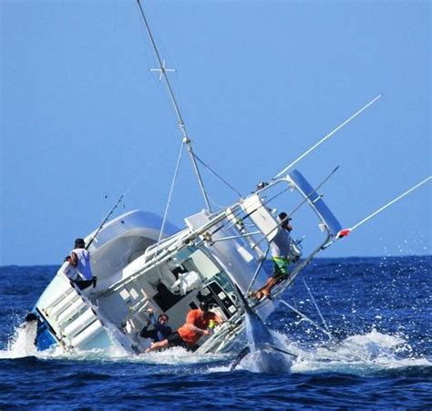 how much is a fishing boat in the philippines blue marlin a bit too much for this boat thrill on