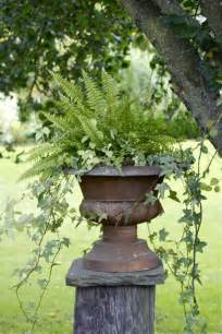 what s better than an urn filled with ferns and trailing