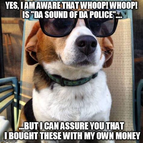 Beagle Meme - beagle sunglasses imgflip