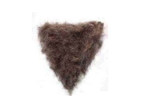 mens hair womens pubic hair buyitflauntitthrowit december 2010