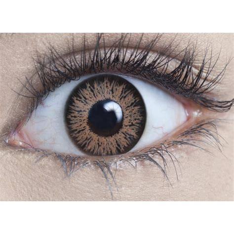 hazel colored hazel colored eye contacts www pixshark images