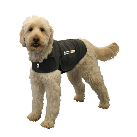 thunder shirts for dogs top 5 anxiety vests to calm stressed dogs