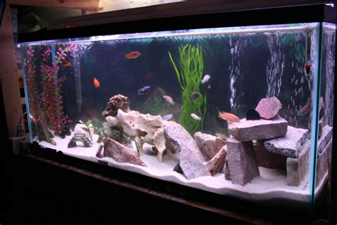 fish tank decorations for cichlids aquarium rock cave