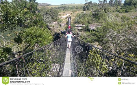 oribi gorge swing price swing bridge editorial image image 60571995
