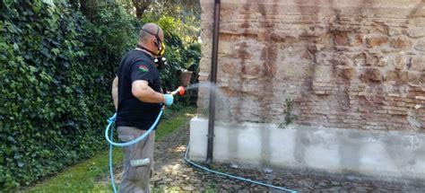 disinfestazione zecche giardino disinfestazione roma zecche zucchet italia